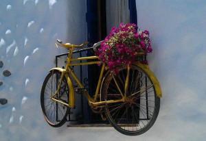 el_secret_de_la_bicicleta